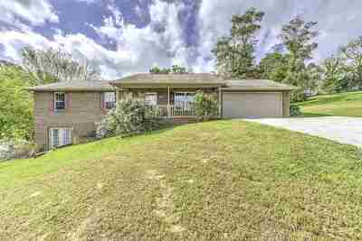 New Tazewell Single Family Home For Sale: 721 Appalachian Ct