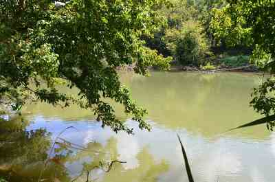 Residential Lots & Land For Sale: 67 ACRES Tazewell Highway