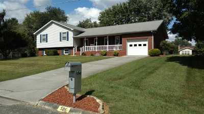 Single Family Home For Sale: 586 Shaver Drive