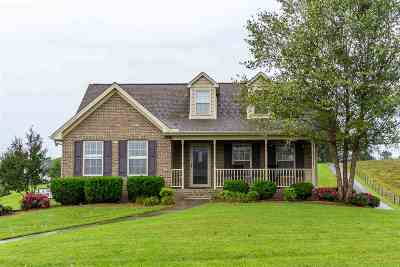 Morristown Single Family Home For Sale: 4271 Stansberry Rd