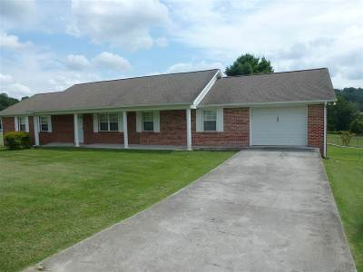 Hamblen County Single Family Home For Sale: 1485 Kidwell Ridge Road