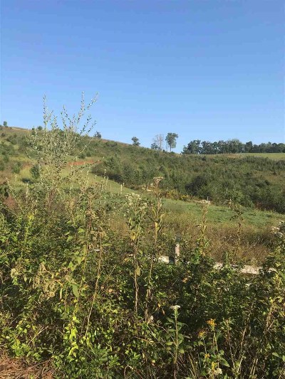 New Market Residential Lots & Land For Sale: 1806 Baldwin Cate Rd