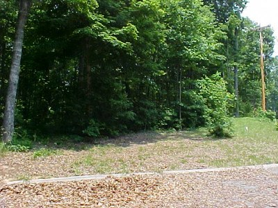 Grainger County Residential Lots & Land For Sale: Lot 52 Cherokee Drive