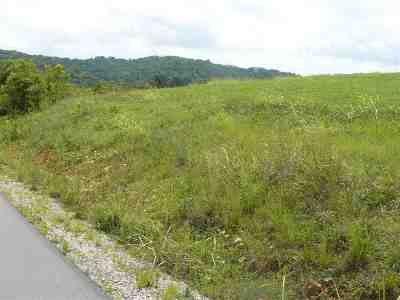 Grainger County Residential Lots & Land For Sale: 18 Lookout Drive