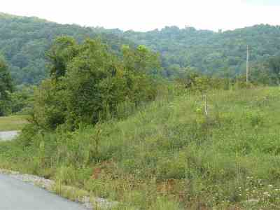 Grainger County Residential Lots & Land For Sale: 17 Lookout Drive