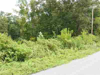 Grainger County Residential Lots & Land For Sale: 14 Lookout Drive