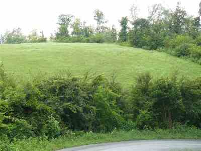 Grainger County Residential Lots & Land For Sale: 16 Lookout Drive