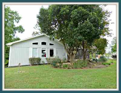 Jefferson County, Cocke County, Sevier County Single Family Home For Sale: 1662 Canal Lane