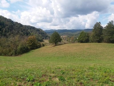 Claiborne County, Cocke County, Grainger County, Greene County, Hamblen County, Hancock County, Hawkins County, Jefferson County Residential Lots & Land For Sale: Tazewell Hwy