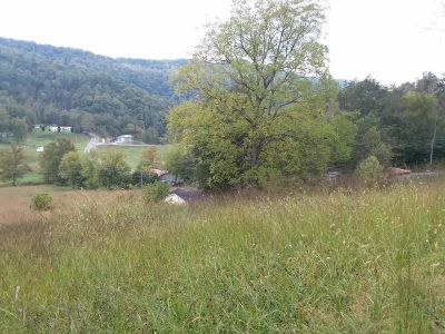 Claiborne County, Cocke County, Grainger County, Greene County, Hamblen County, Hancock County, Hawkins County, Jefferson County Residential Lots & Land For Sale: Hwy 63 Vardy Blackwater Road
