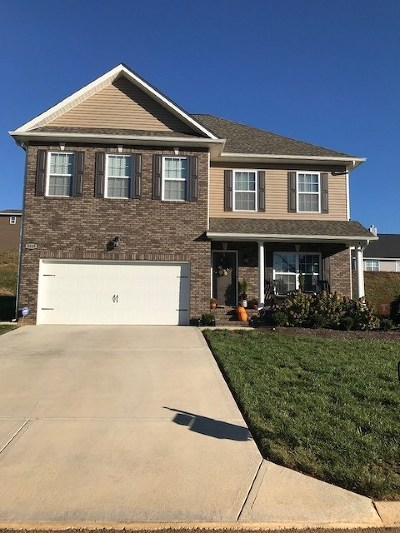 Sevierville Single Family Home For Sale: 2665 Southwinds Circle