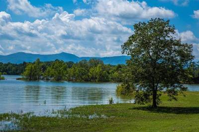 Grainger County, Hamblen County, Hawkins County, Jefferson County Residential Lots & Land For Sale: 131 Cypress Drive
