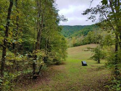 Claiborne County, Cocke County, Grainger County, Greene County, Hamblen County, Hancock County, Hawkins County, Jefferson County Residential Lots & Land For Sale: tbd (29.66ac) Tazewell Highway