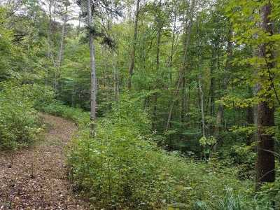 Claiborne County, Cocke County, Grainger County, Greene County, Hamblen County, Hancock County, Hawkins County, Jefferson County Residential Lots & Land For Sale: tbd (16.66ac) Tazewell Highway