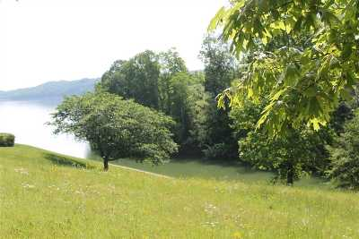 Grainger County, Hamblen County, Hawkins County, Jefferson County Residential Lots & Land For Sale: 150 Scenic Shores