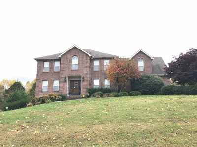 Hamblen County Single Family Home For Sale: 1544 Wind Chase Drive