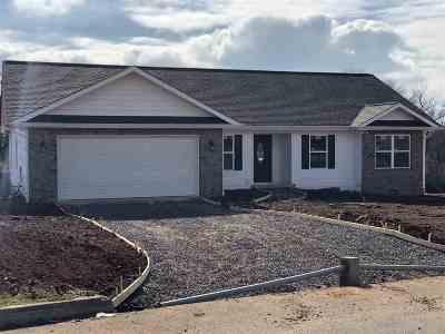 Single Family Home For Sale: 213 Florence Cir