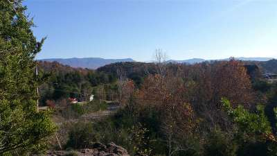 Grainger County, Hamblen County, Hawkins County, Jefferson County Residential Lots & Land For Sale: LOTS 3-5 Very Old Barton Trl