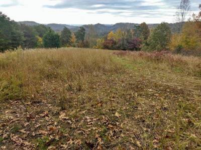 Claiborne County, Cocke County, Grainger County, Greene County, Hamblen County, Hancock County, Hawkins County, Jefferson County Residential Lots & Land For Sale: tbd (27ac) Big Creek Road