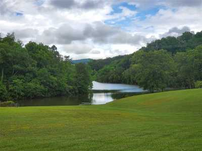 Grainger County, Hamblen County, Hawkins County, Jefferson County Residential Lots & Land For Sale: Lot 3 Anderson Bend Rd