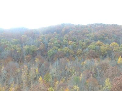 Claiborne County, Cocke County, Grainger County, Greene County, Hamblen County, Hancock County, Hawkins County, Jefferson County Residential Lots & Land For Sale: Lot 4 Steve Brown Road