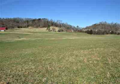 Dandridge Residential Lots & Land For Sale: 15.3 ACRES W Dumplin Valley Rd