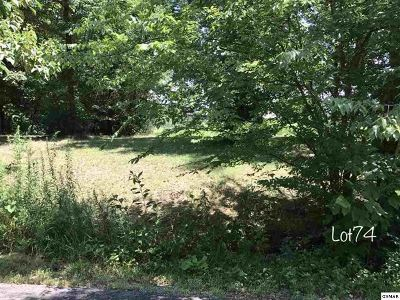 Residential Lots & Land For Sale: Oneil Rd Lot 74