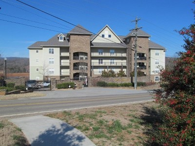 Grainger County Condo/Townhouse For Sale: 143 Sandpiper Lane #A