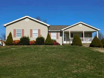 Rutledge Single Family Home For Sale: 296 Coffey Heights