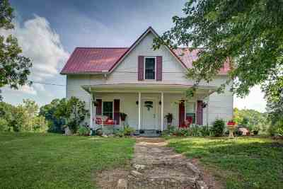 Single Family Home For Sale: 789 S Chucky Pike