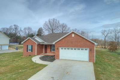 Hamblen County Single Family Home For Sale: 1772 Butterfly Ct