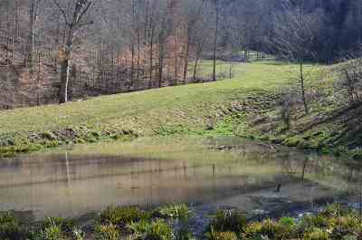Grainger County Residential Lots & Land For Sale: 5556 Mountain Valley Rd