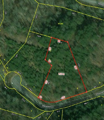 Residential Lots & Land For Sale: Lot 8 Pheasant Court