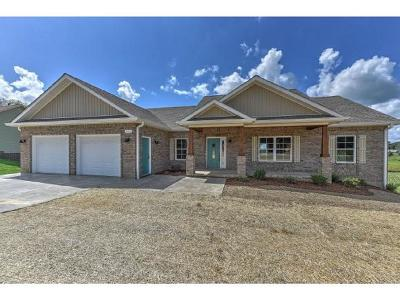 Single Family Home For Sale: 797 Hales Chapel Road