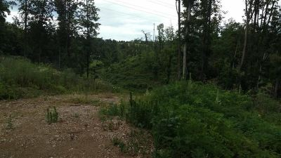 Residential Lots & Land For Sale: S Davy Crockett Pkwy