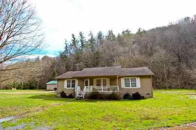 Cosby Single Family Home For Sale: 381 Middle Creek Rd
