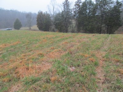 Jefferson City Residential Lots & Land For Sale: LOT 3 Hickory Hills Drive