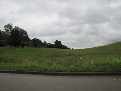 Hamblen County Residential Lots & Land For Sale: Jones Franklin Rd