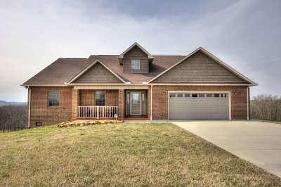 Grainger County Single Family Home For Sale: 386 Tumbleweed Trl