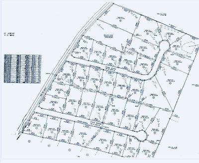 Grainger County Residential Lots & Land For Sale: Lot 28 Eagle Lane