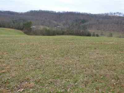 Claiborne County, Cocke County, Grainger County, Greene County, Hamblen County, Hancock County, Hawkins County, Jefferson County Residential Lots & Land For Sale: Lot 4 Mountain View Church Rd