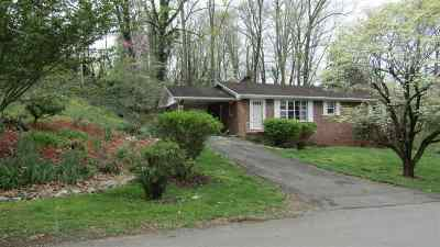 Single Family Home For Sale: 104 Armitage Drive