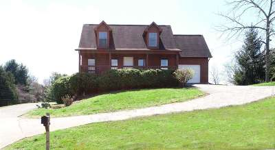 Single Family Home For Sale: 1173 McFarland