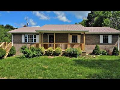Cocke County Single Family Home For Sale: 1172 Palmer Hollow Rd