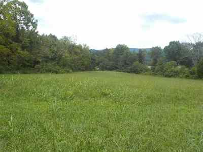 Grainger County Residential Lots & Land For Sale: 6.5 Acres Cherry Street