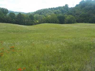 Grainger County Residential Lots & Land For Sale: 20.58 Acres Little Valley Road