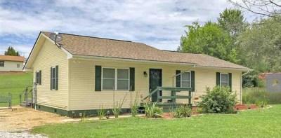 Dandridge Single Family Home For Sale: 966 Highway 25-70 E