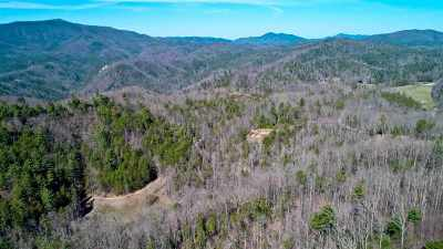 Claiborne County, Cocke County, Grainger County, Greene County, Hamblen County, Hancock County, Hawkins County, Jefferson County Residential Lots & Land For Sale: 17 ACRES Dogwood Stand Rd