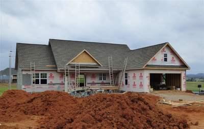 Jefferson City Single Family Home For Sale: 627 N Chucky Pike