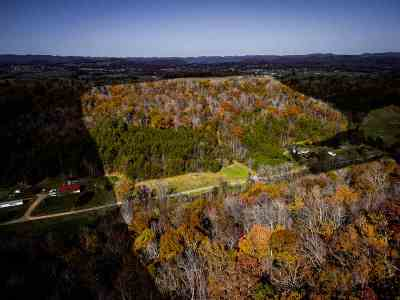 Residential Lots & Land For Sale: 231A Barnett Hollow Rd